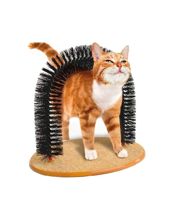 Brinquedo Arco Massageador para Gatos - Pet Toy - Western